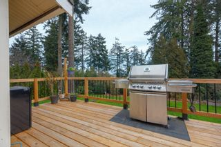 Photo 45: 6321 Clear View Rd in : CS Martindale House for sale (Central Saanich)  : MLS®# 870627