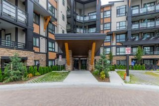 Photo 1: 312 20829 77A AVENUE in Langley: Willoughby Heights Condo for sale : MLS®# R2425055