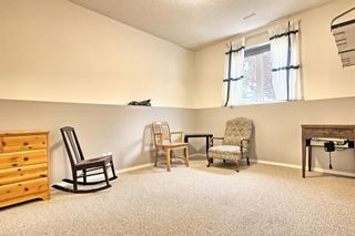 Photo 31: 64 Arbour Glen Close NW in Calgary: Arbour Lake Detached for sale : MLS®# A1117884