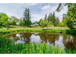Photo 15: 3873 216 STREET in Langley: Brookswood Langley House for sale : MLS®# R2114161