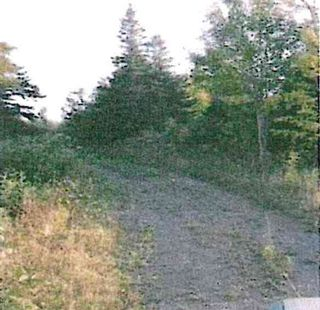 Photo 3: East River East Side Road in Springville: 108-Rural Pictou County Vacant Land for sale (Northern Region)  : MLS®# 202107423