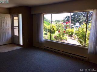 Photo 6: 918 Bay St in VICTORIA: Vi Hillside House for sale (Victoria)  : MLS®# 787949