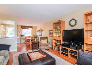 Photo 11: 416 RUNDLEHILL Way NE in Calgary: Rundle House for sale : MLS®# C4015836