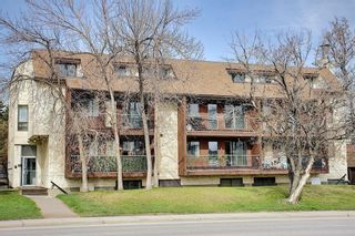 Main Photo: 402 1113 37 Street SW in Calgary: Rosscarrock Apartment for sale : MLS®# A1138465