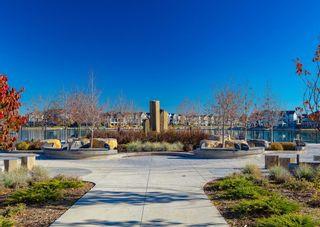 Photo 41: 291 Mahogany Manor SE in Calgary: Mahogany Detached for sale : MLS®# A1079762