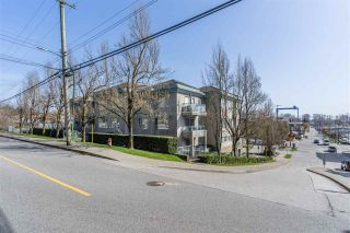 "Photo 15: 203 1085 W 17TH Street in North Vancouver: Pemberton NV Condo for sale in ""Lloyd Regency"" : MLS®# R2562624"