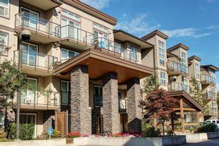 Photo 1: 110 30515 CARDINAL Avenue in Abbotsford: Abbotsford West Condo for sale : MLS®# R2119609