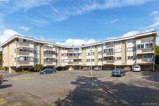 Photo 20: 306 1525 Hillside Ave in VICTORIA: Vi Oaklands Condo for sale (Victoria)  : MLS®# 782338
