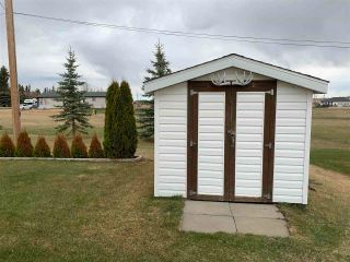Photo 26: 5220 48 Avenue: Lougheed House for sale : MLS®# E4243675