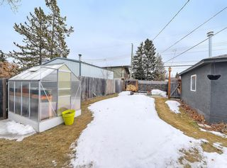 Photo 34: 7727 47 Avenue NW in Calgary: Bowness Detached for sale : MLS®# A1079971