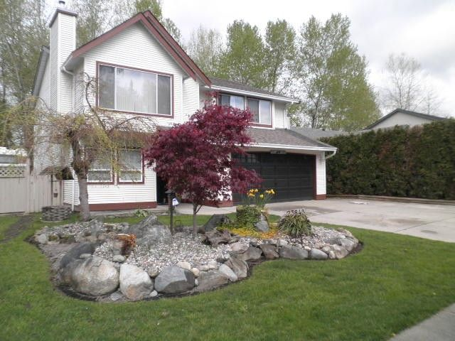 Main Photo: 23843 119A Avenue in Maple Ridge: Cottonwood MR House for sale : MLS®# V1116745