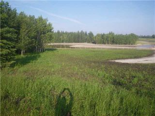 Photo 7: 314 55504 Rge Rd 13: Rural Lac Ste. Anne County Rural Land/Vacant Lot for sale : MLS®# E4213581