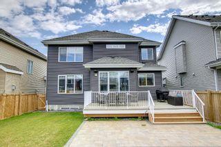 Photo 41: 2040 88 Street in Edmonton: Zone 53 House for sale : MLS®# E4262564
