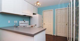 Photo 14: 22980 124B Street in Maple RIdge: East Central House for sale (Maple Ridge)  : MLS®# R2335857
