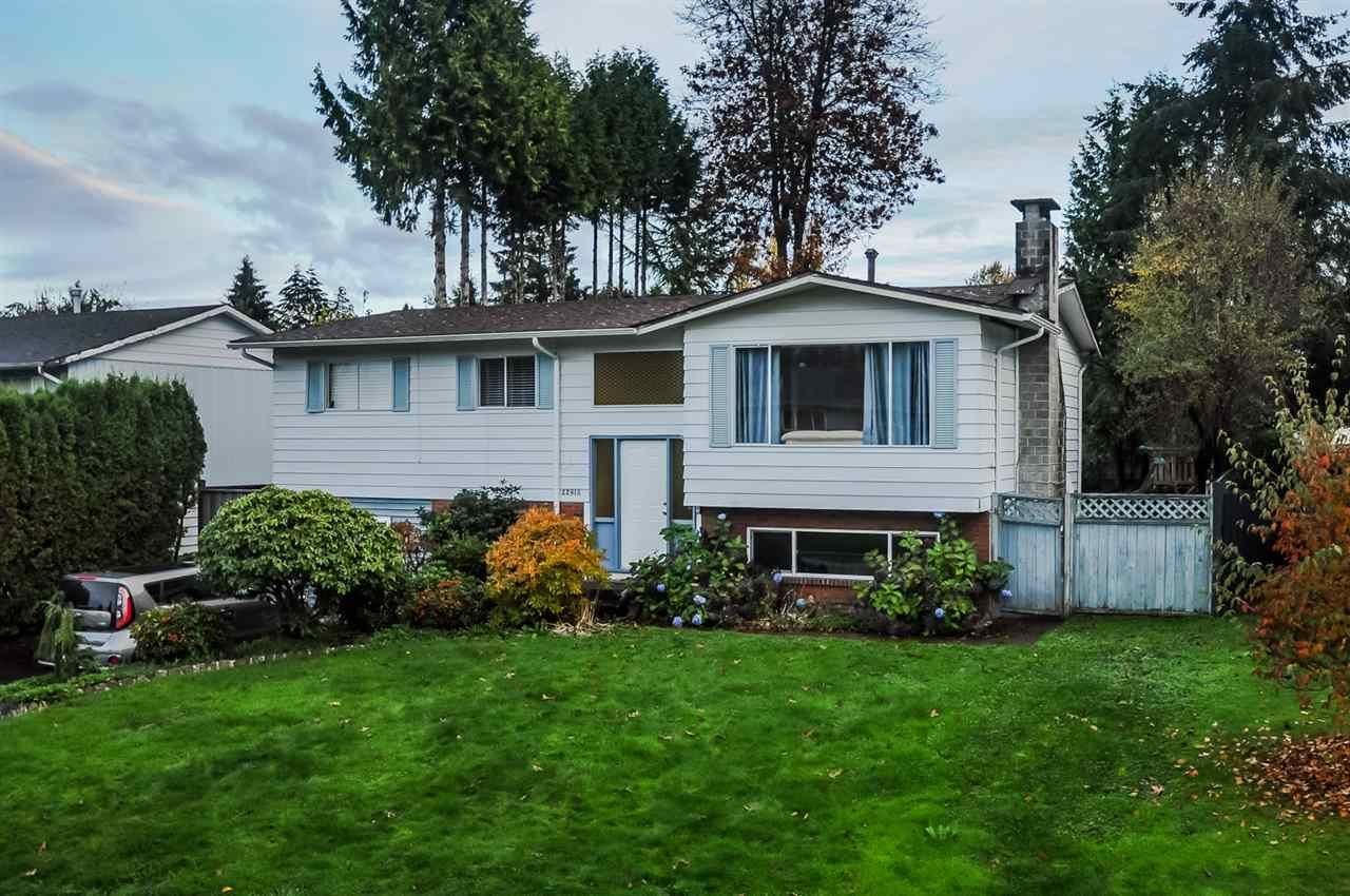 Main Photo: 22918 EAGLE Avenue in Maple Ridge: East Central House for sale : MLS®# R2121887