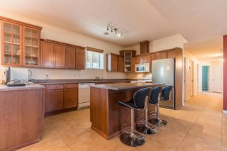 Photo 25: 49080 RGE RD 273: Rural Leduc County House for sale : MLS®# E4238842