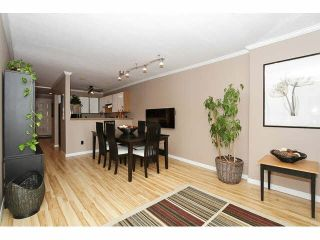 """Photo 1: 204 11724 225TH Street in Maple Ridge: East Central Townhouse for sale in """"ROYAL TERRACE"""" : MLS®# V1090224"""