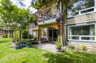 "Photo 31: 48 11737 236 Street in Maple Ridge: Cottonwood MR Townhouse for sale in ""Maplewood"" : MLS®# R2460701"