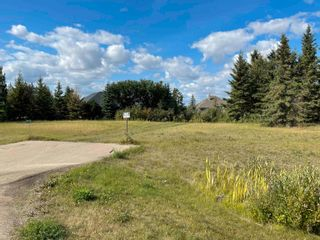 Photo 3: 50 53217 RGE RD 263: Rural Parkland County Rural Land/Vacant Lot for sale : MLS®# E4260089