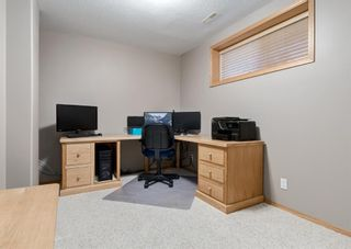 Photo 36: 103 DOHERTY Close: Red Deer Detached for sale : MLS®# A1147835