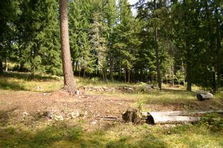 Photo 32: 11 6432 Sunnybrae Road in Tappen: Steamboat Shores Vacant Land for sale (Shuswap Lake)  : MLS®# 10155187