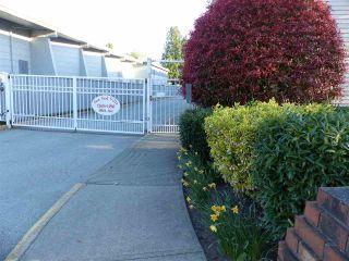 """Photo 1: 210 11806 88 Avenue in Delta: Annieville Condo for sale in """"Sungod Villa"""" (N. Delta)  : MLS®# R2568999"""
