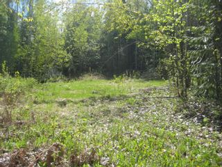 Photo 5: 9 Dogwood Crescent in Eagle Bay: Land Only for sale : MLS®# 10008245