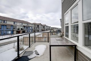 Photo 47: 33 Williamstown Park NW: Airdrie Detached for sale : MLS®# A1056206