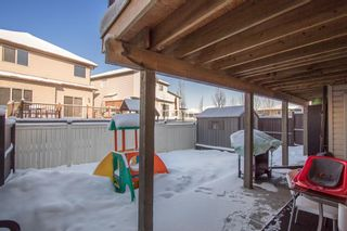 Photo 28: 558 PANAMOUNT Boulevard NW in Calgary: Panorama Hills Detached for sale : MLS®# A1068812