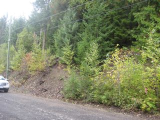 Photo 4: 13 Vickers Trail in Anglemont: Land Only for sale : MLS®# 10055804