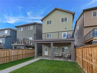 Photo 20: 159 SAGE BANK Grove NW in Calgary: Sage Hill House for sale : MLS®# C4083472