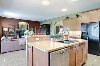 Photo 11: 188 SPRINGMERE Way: Chestermere Detached for sale : MLS®# A1136892