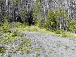 Photo 12: Lot VH-1 Highway 10 in Meisners Section: 405-Lunenburg County Vacant Land for sale (South Shore)  : MLS®# 202111350