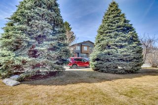 Photo 3: 2824 Cochrane Road NW in Calgary: Banff Trail Detached for sale : MLS®# A1085971