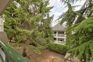 Photo 31: 217 22015 48 Avenue in Langley: Murrayville Condo for sale : MLS®# R2608935