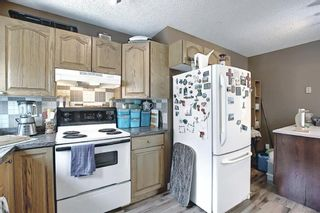 Photo 13: 367 Maitland Crescent NE in Calgary: Marlborough Park Detached for sale : MLS®# A1093291