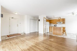 Photo 9: 303 1715 35 Street SE in Calgary: Albert Park/Radisson Heights Apartment for sale : MLS®# A1068224