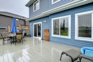 Photo 22: 2111 BLUE JAY Point in Edmonton: Zone 59 House for sale : MLS®# E4261289
