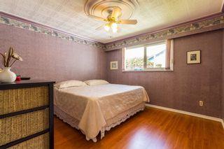Photo 11: 20338 124 Avenue in Maple Ridge: Northwest Maple Ridge House for sale : MLS®# R2133907