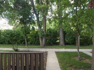 Photo 9: 3941 Grant Avenue in WINNIPEG: Charleswood Condominium for sale (South Winnipeg)  : MLS®# 1310623
