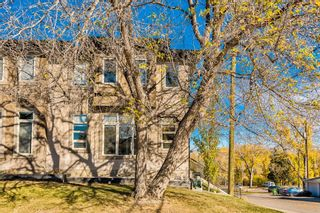 Photo 42: 2203 13 Street NW in Calgary: Capitol Hill Semi Detached for sale : MLS®# A1151291