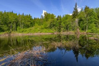 Photo 30: 12499 LOUGHEED Highway: Agassiz Land for sale : MLS®# R2617309