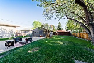 Photo 26: 805 67 Avenue SW in Calgary: Kingsland Detached for sale : MLS®# A1115484