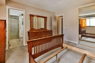 Photo 14: 1916 65 Street NE in Calgary: Pineridge House for sale : MLS®# C4177761