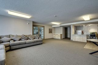 Photo 27: 201 511 56 Avenue SW in Calgary: Windsor Park Apartment for sale : MLS®# C4266284