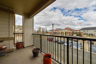 Photo 4: 206 4450 MCCRAE Avenue in Edmonton: Zone 27 Condo for sale : MLS®# E4242315