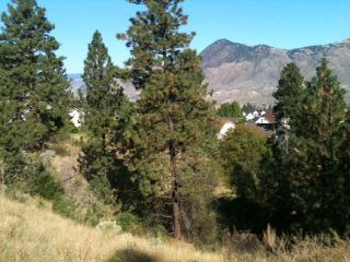 Photo 38: 1780 COLDWATER DRIVE in : Juniper Heights House for sale (Kamloops)  : MLS®# 136530