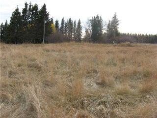 Photo 8: 3 miles east of Sundre in SUNDRE: Rural Mountain View County Rural Land for sale : MLS®# C3590774