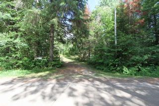 Photo 1: 300 Pinery Road in Kawartha Lakes: Rural Somerville Property for sale : MLS®# X4840235