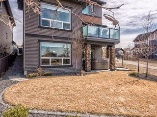 Photo 45: 205 Kingsmere Cove SE: Airdrie Detached for sale : MLS®# A1088464